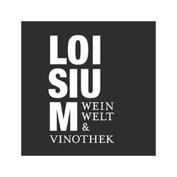 Die-Internette---Referenzen---Loisium-Weinwelt (1)